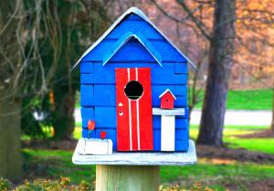 Birdhouse_030